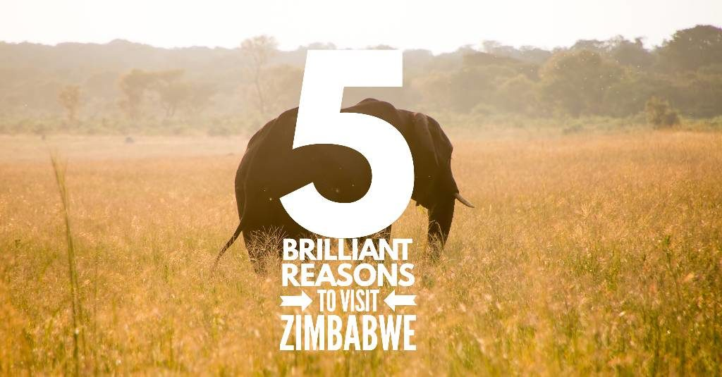 5 brilliant reasons to visit Zimbabwe