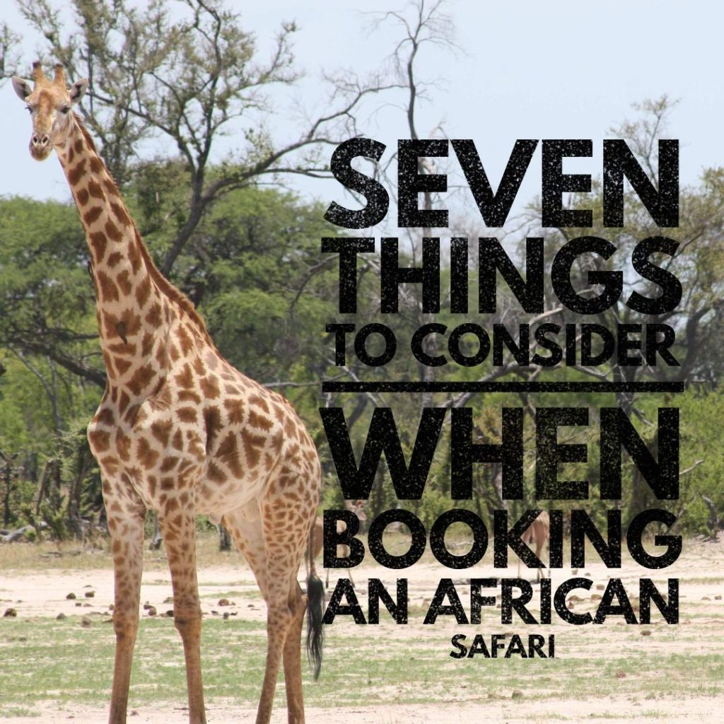 7 Things To Consider When Booking An African Safari