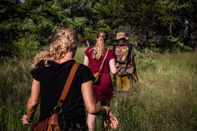 Safari Rhino Tracking on Foot in the Matopos National Park