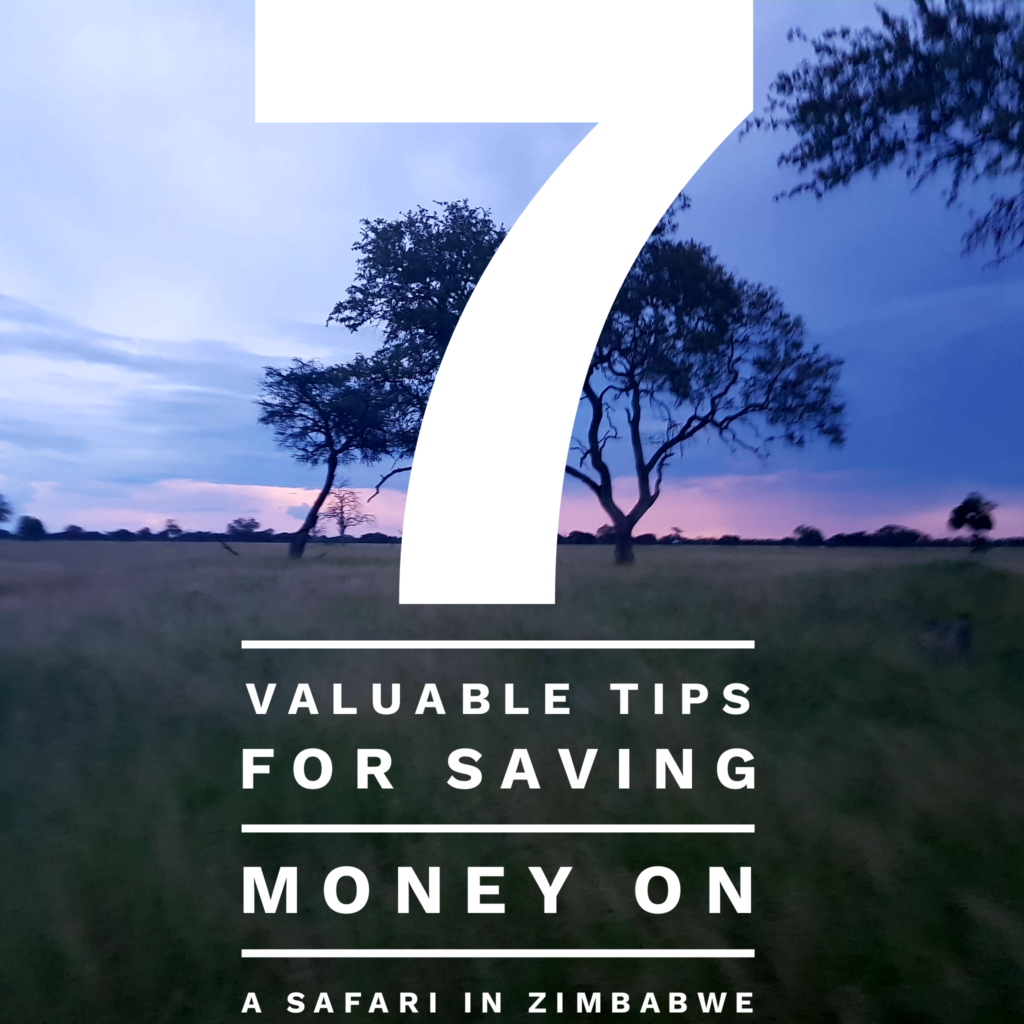 7 Valuable Tips for Saving Money on Safari in Zimbabwe