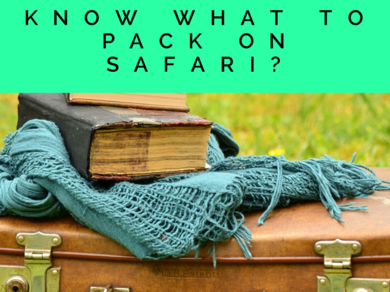 Things to pack on Safari in Africa