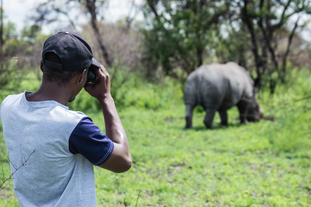 The RIGHT way to be a wildlife tourist in Zimbabwe.